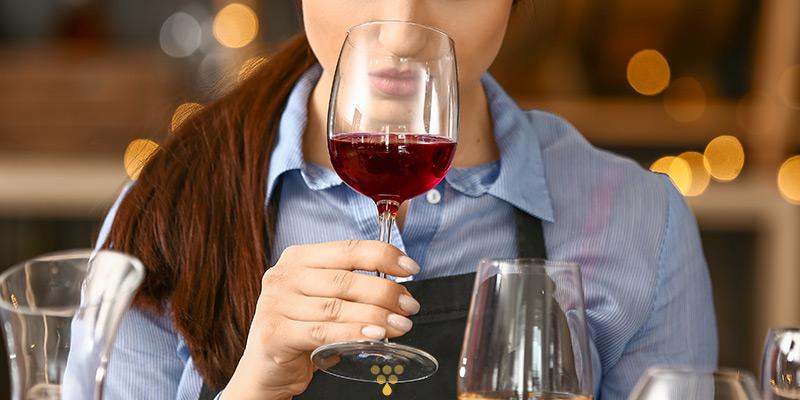 Rosso di Montalcino caratteristiche organolettiche