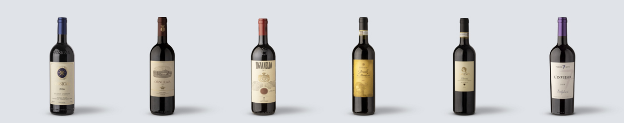 i grandi vini rossi toscani